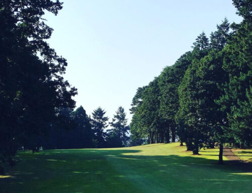 Golfing in Corvallis – a Visitors Guide