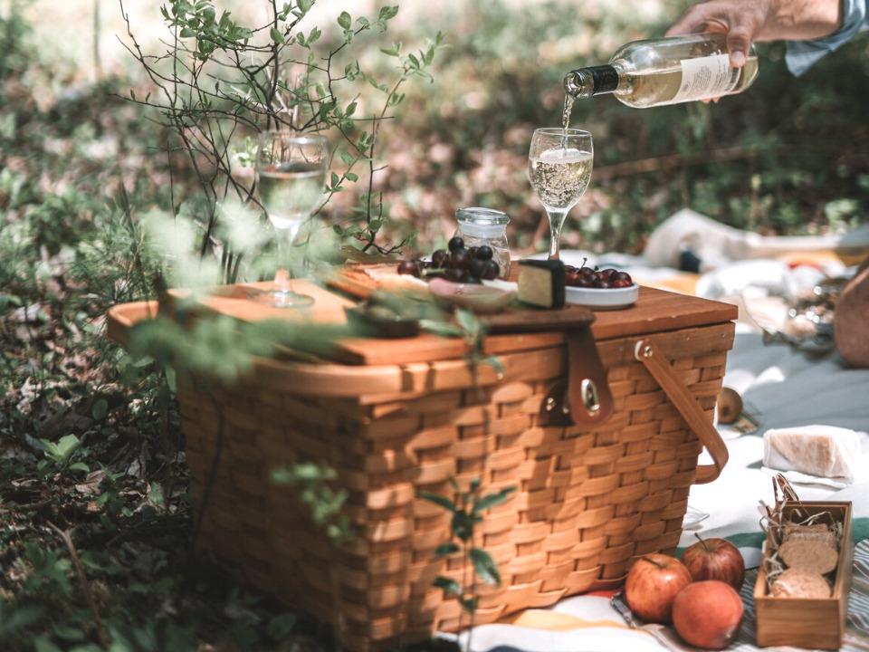 Wine tasting picnic