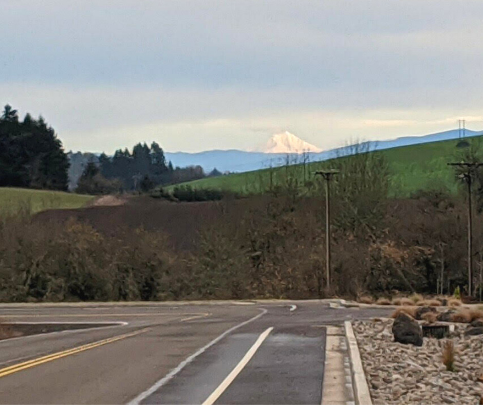 scenic views cycling in the Willamette Valley