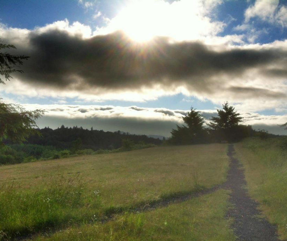 striking views from Corvallis bicycle trails